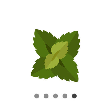 Multicolored vector icon of fresh mint leaves Illustration