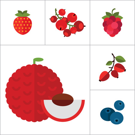 red currant: Berry Icon Set. Cranberry Black Currant Blackberry Blueberry Dogrose Gooseberry Red Currant Raspberry Strawberry Cowberry Cherry