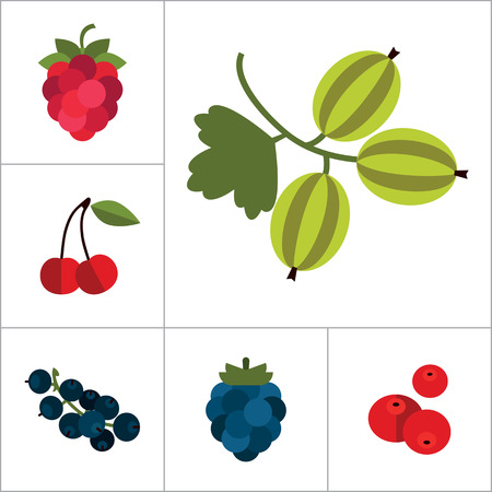 dogrose: Berry Icon Set. Cranberry Black Currant Blackberry Blueberry Dogrose Gooseberry Red Currant Raspberry Strawberry Cowberry Cherry