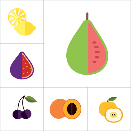Fruit Icon Set. Lemon Apple And Banana Orange Melon Mango Cut Carambola Cut Fig Ripe Plum Guava Fruit Apricot Apple Bird Cherry Passion Fruit