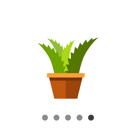 potting soil: Multicolored vector icon of flower in pot