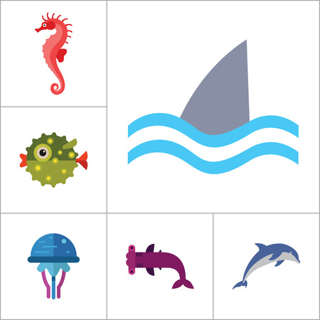thirteen: Fish icons set with dolphin, shark and seahorse. Thirteen vector icons