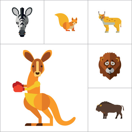 Animal Icon Set. Lynx Lizard Fox Hare Head Bear Koala Lion Face Red Squirrel Brown Moose Yak Kangaroo Boxer Mandrill Head Zebra Head Illustration