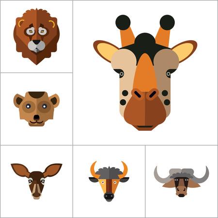 lince rojo: Animal Faces Icon Set. Cabeza de león cabeza Zebra cabeza del hipopótamo jirafa Cabeza cara del león la cabeza del lobo elefante Cabeza del antílope Cabeza Cabeza de Meerkat pista de la gama Ox Face Red Lynx Cabeza Cabeza de Toro