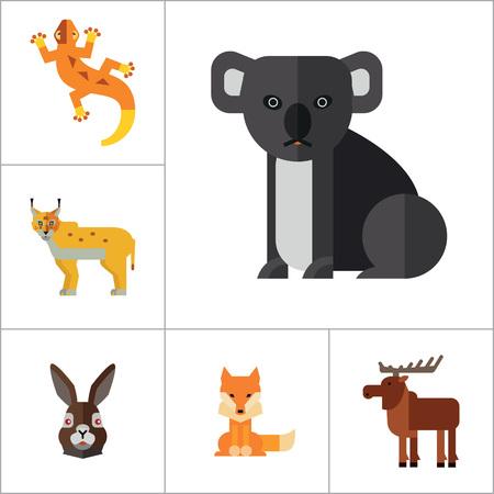 red squirrel: Animal Icon Set. Lynx Lizard Fox Hare Head Bear Koala Lion Face Red Squirrel Brown Moose Yak Kangaroo Boxer Mandrill Head Zebra Head Illustration