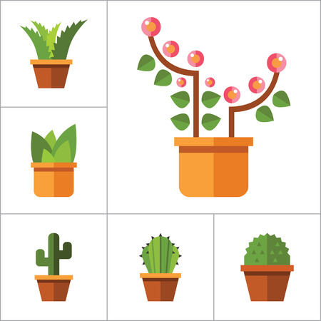a bough: Flowers vector icons set with aloe in pot, tulip and cactus in pot. Thirteen flat icons Illustration