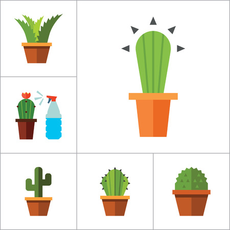 peach tree: Potted Flowers Icon Set. Money Tree Cactus In Pot Cactus And Spray Bottle Plant Blooming Flower Chinese Peach Tree Cactus Red Flower Cactus In Flower Pot Tree In Pot Aloe Vera