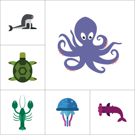 creatures: Sea creatures icons set. Thirteen vector icons of dolphin, turtle, sea lion and other sea creatures