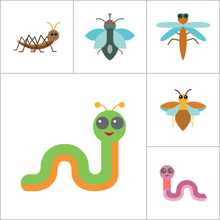Insects Icon Set. Ladybird Bee Beetle Mosquito Fly Brown Mite Butterfly Blue Beetle Mite Caterpillar Pink Worm Cute Caterpillar Ant