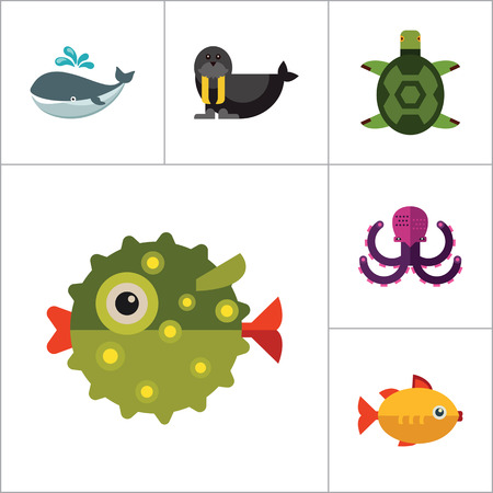 sea lion: Sea creatures icons set. Thirteen vector icons of dolphin, turtle, sea lion and other sea creatures