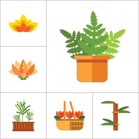 watering plant: Plant Icon Set. Basket With Flowers Wheat Ears Watering Plant In Flowerpot Flowers In Pot Tulips In Basket Tulip Lotus Exotic Flower Hand Holding Plant Boston Fern Rosemary Bamboo