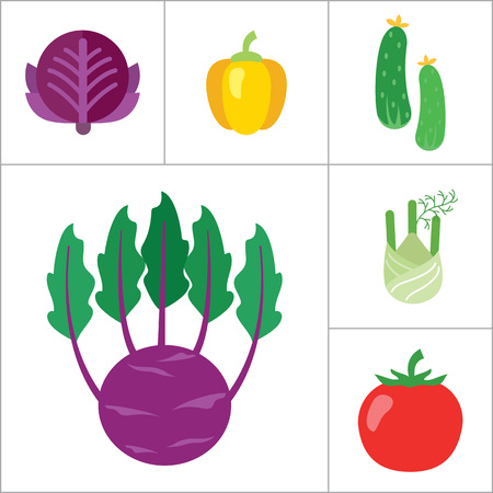 Healthy food icons set with carrot, cucumber and tomato. Thirteen vector icons
