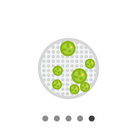 daughter cells: Volvox icon. Multicolored vector illustration of cells forming colony of round shape