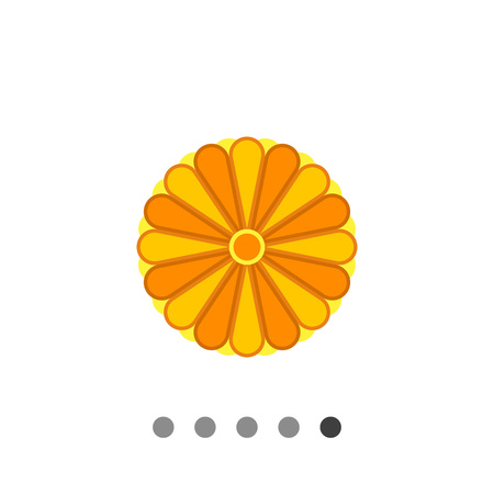 japanese chrysanthemum: Stylized Japanese yellow chrysanthemum ornament element with many petals colored in different tints of yellow