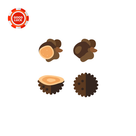 forestry: Black truffles and their sections. Rare, delicious, forest. Mushroom concept. Can be used for topics like forestry, cooking, biology, agriculture.