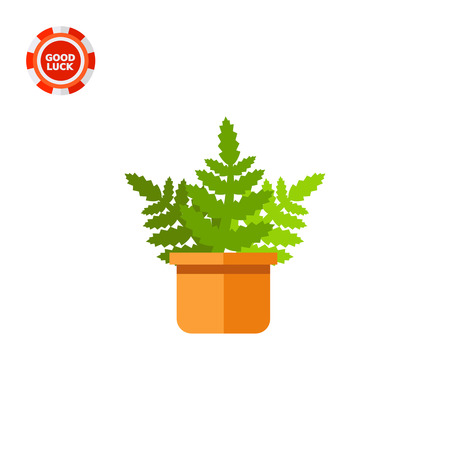 Boston fern growing in pot, side view. Decorative, natural, indoors. House plant concept. Can be used for topics like plant growing, marketing, botany.