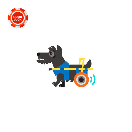 incapacitated: Disabled dog moving with help of prosthesis. Disability, injury, aid. Care of disabled animals concept. Can be used for topics like disability, care, veterinary medicine.