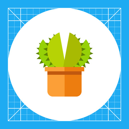 aloe vera plant: Stylized aloe vera in pot, side view. Decorative, natural, cosmetic. House plant concept. Can be used for topics like plant growing, medicine, botany. Illustration