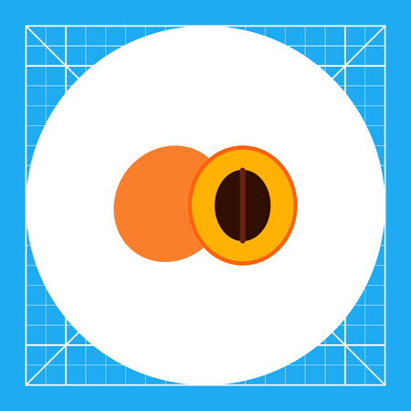 Vector icon of apricot and cut apricot half