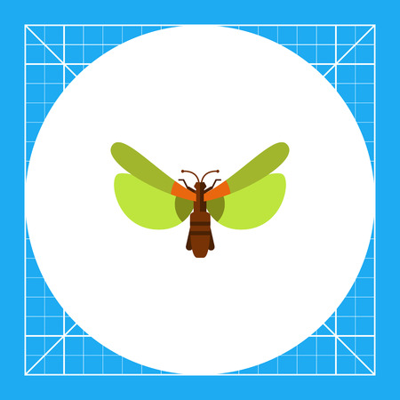 Multicolored vector icon of beetle with green wings, top view
