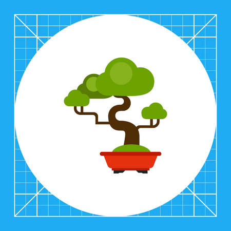 bonsai: Vector icon of green bonsai tree in tub