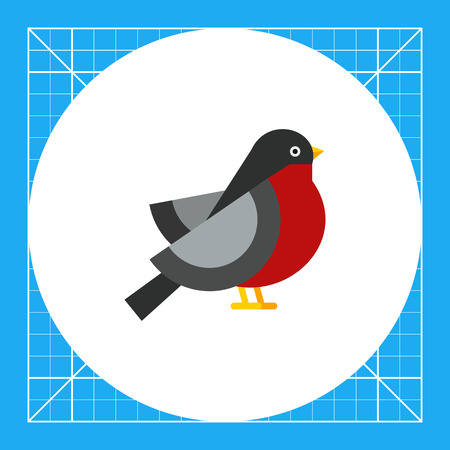 beine spreizen: Multicolored vector icon ofbullfinch, side view