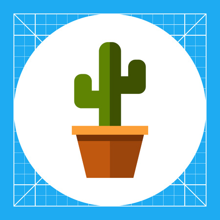 potting soil: Multicolored vector icon of cactus with branches in flower pot
