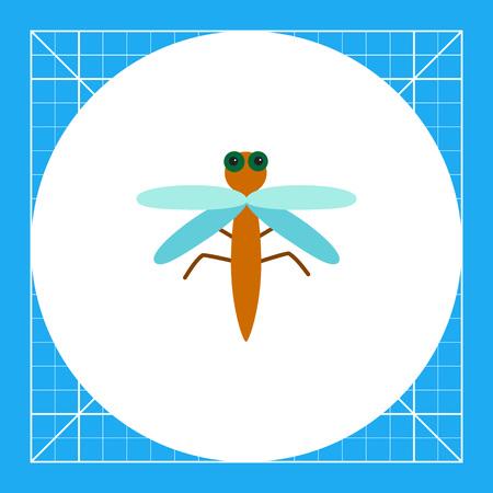 Multicolored vector icon of carton dragonfly, top view