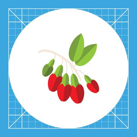 bunch: Bunch of goji berries.