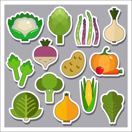 greengrocery: Green Vegetables Icons Set. Cauliflower Potato Green Cabbage Broccoli Asparagus Artichoke Garlic Bulb Onion Corn Cob lettuce Pumpkin with Tomato and Carrot Beet