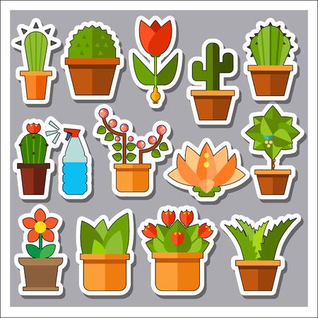 aloe vera plant: Plant Icons Set. Watering Plant Cactus Aloe Vera Cactus in Pot Peach Tree Tulip Flowers in Pot Flower Lotus Little Tree in Pot Green Plant in Pot Mexican Cactus in Pot Cactus with Spines