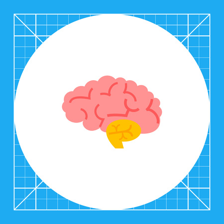 the topics: Brain. Human organ, nervous system, health care. Organ concept. Can be used for topics like disease, organs, anatomy, health care