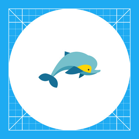 zoology: Isolated dolphin. Clever, mammal, beautiful. Dolphin concept. Can be used for topics like environment, zoology, nature.