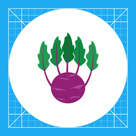 turnip: Vector icon of kohlrabi with green leaves