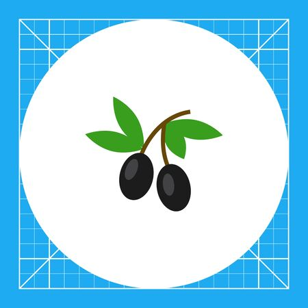 Icon of two olives on stem with leaves Illustration