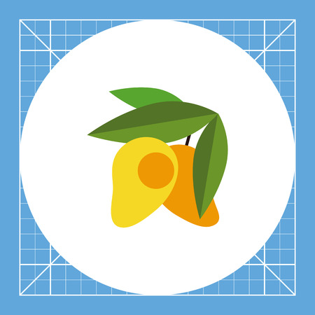 Lucuma with Leaves. Plant, tropical, fruit. Lucuma concept. Can be used for topics like nature, botany, food.