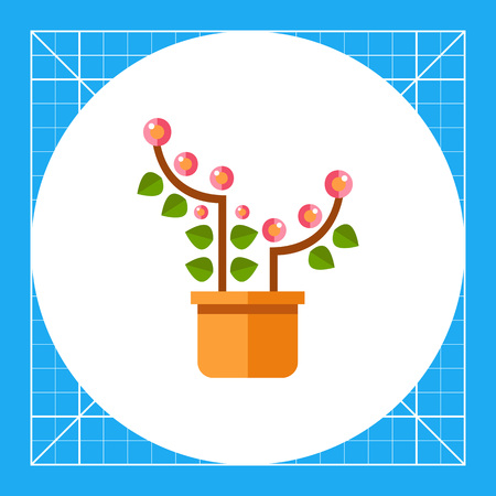 Multicolored vector icon of pink blooming flower in pot