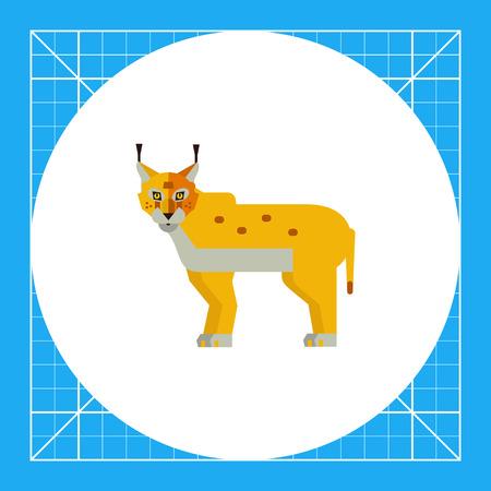 lince rojo: icono de vectores multicolor de lince rojo salvaje Vectores