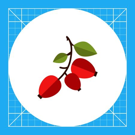 dogrose: Vector icon of ripe dogrose berry bunch