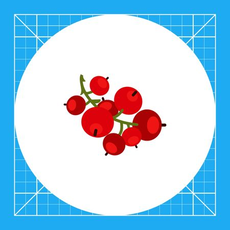 ripe: Vector icon of ripe red currant bunch Illustration