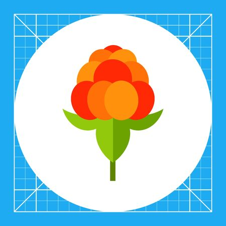 Single cloudberry with leaves. Sweet, juicy, forest. Berries concept. Can be used for topics like food, medicine, health. Illustration