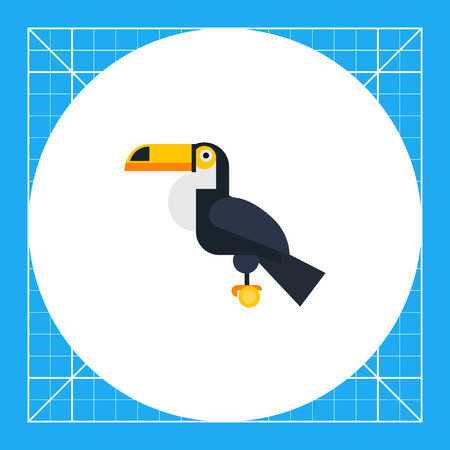 Multicolored vector icon oftoucan sitting on perch