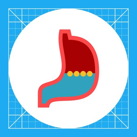 digestive system: Multicolored vector icon of stomach, internal organ of digestive system