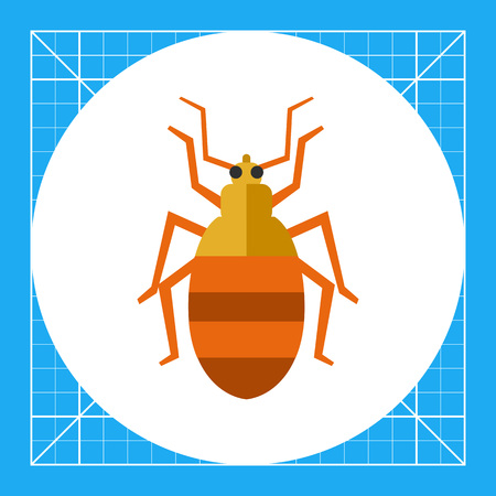 Multicolored vector icon of striped beetle, top view