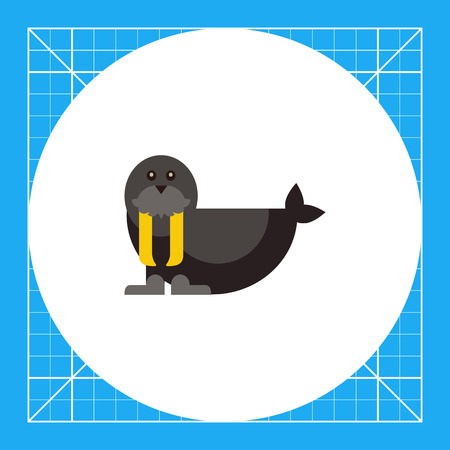 Multicolored vector icon of black cute walrus