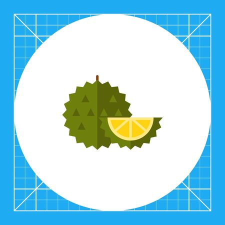 pulp: Multicolored vector icon of whole exotic fruit durian and cut piece