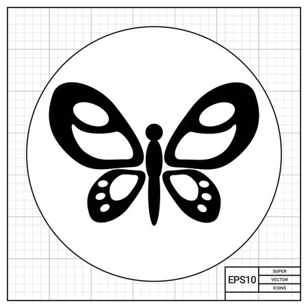 zoology: Beautiful butterfly with spread ornate patterned wings. Summer, insect, tropical. Butterfly concept. Can be used for topics like zoology, biology, tourism.