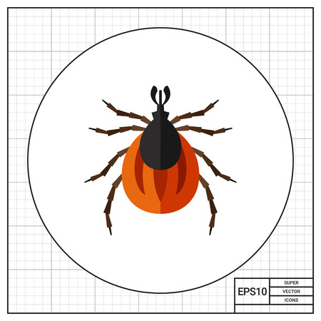 acarid: Multicolored vector icon of brown mite, top view Illustration