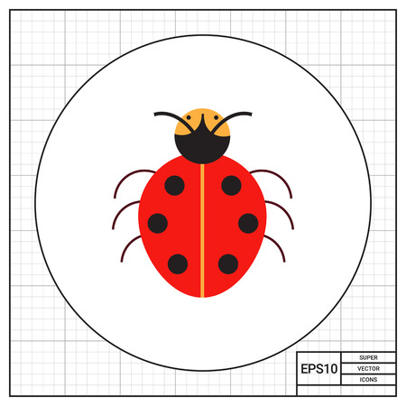 Multicolored vector icon of cartoon ladybird, top view