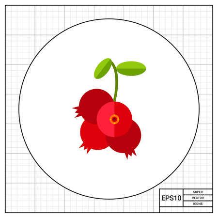 cowberry: Cowberry branch with leaves and berries. Sour, marsh, jam. Berries concept. Can be used for topics like cookery, medicine, health.